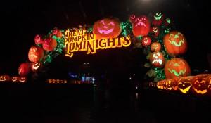 Dollywood Harvest Festival And Great Pumpkin Luminights